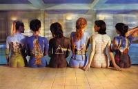 pink_floyd_back_bodypainting_back_catalogue_poster_albums